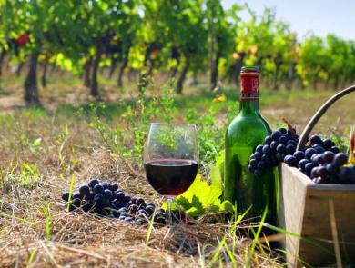 Armenian wine