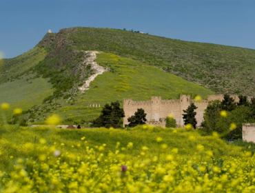 Tigranakert Fortress