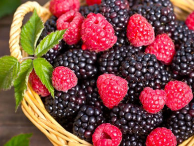 Festival of honey and berries