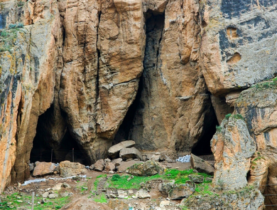 Birds cave