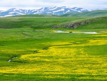 Vardenyats passway (Selim)