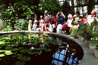 Բուսաբանական այգի
