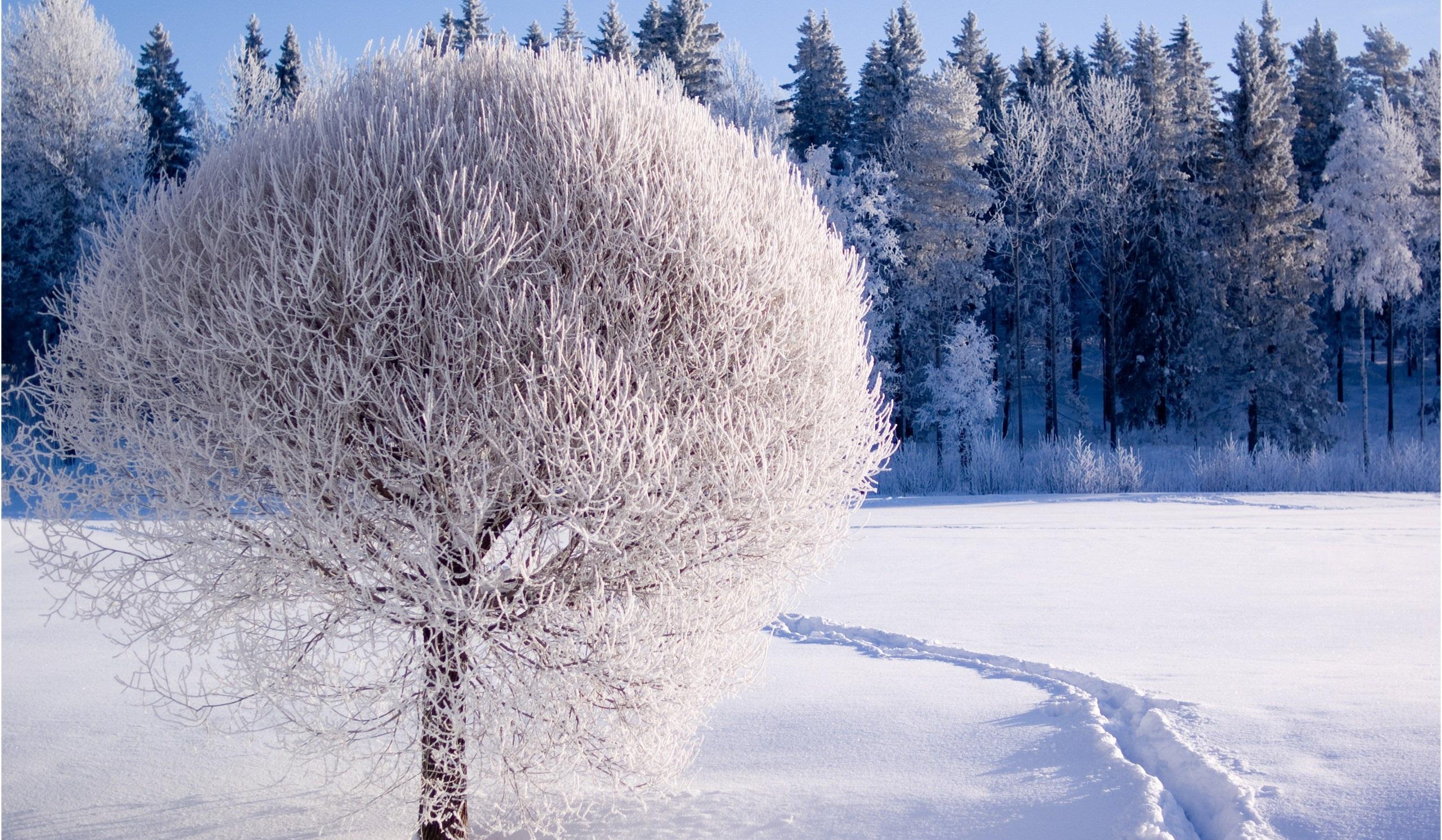 Ձմեռային հանգիստը Հայաստանում 2017 - 2018թթ