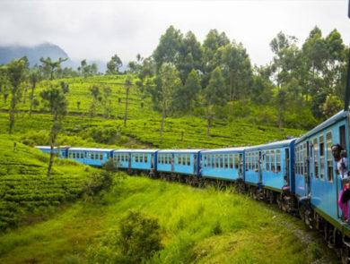 Scenic գնացք երթուղին