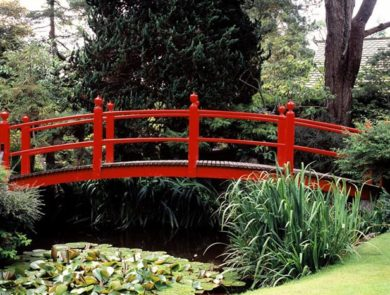 Japanese garden, red bridge