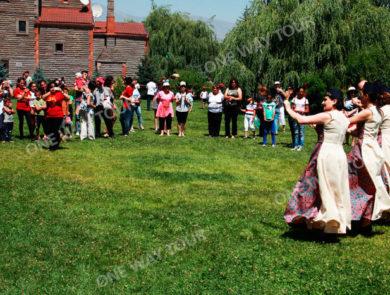 Фестиваль малины