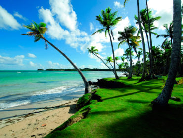Holidays in Sri Lanka