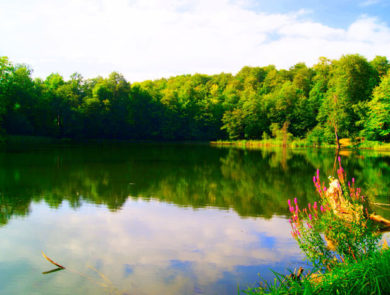 Озеро Гош