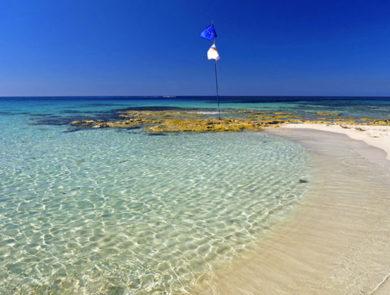 Ayia Napa Bay Beaches