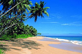Пасикуда, Шри Ланка