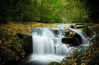 Национальный лес Chattahoochee