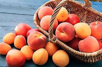 Sonnige Früchte