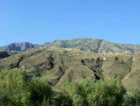 Yeghegnadzor Reserve