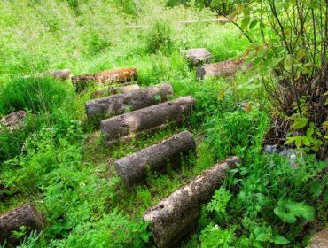 Եղեգիսի հրեական գերեզմանատուն
