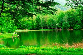 Gosh Lake