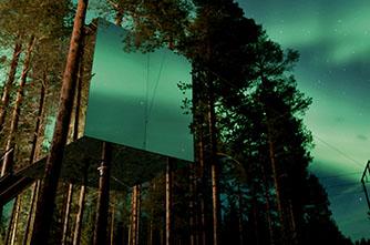 TREE HOTEL, Шведия