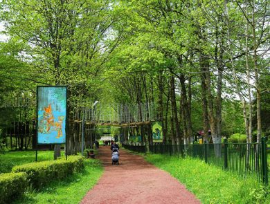 Verev Rope Park