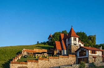 Отель «Аlpine castle»